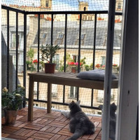 Cat Fence For Apartment Balcony